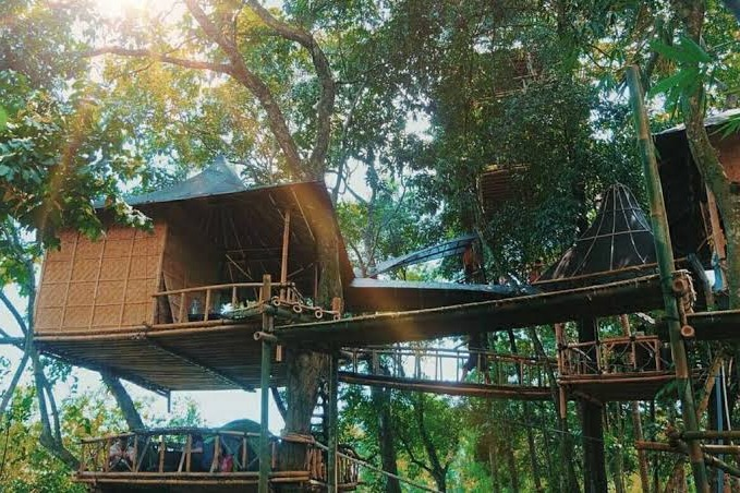The beauty of Bali Temega Tree House