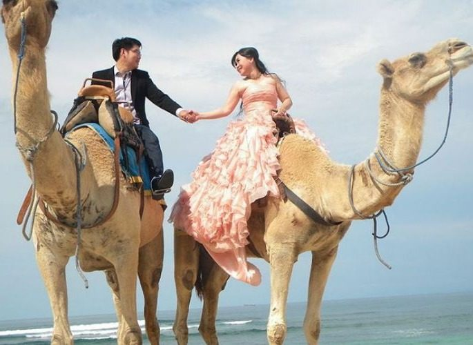 Bali Camel Safari Tourism,  Riding Camels by the Beach